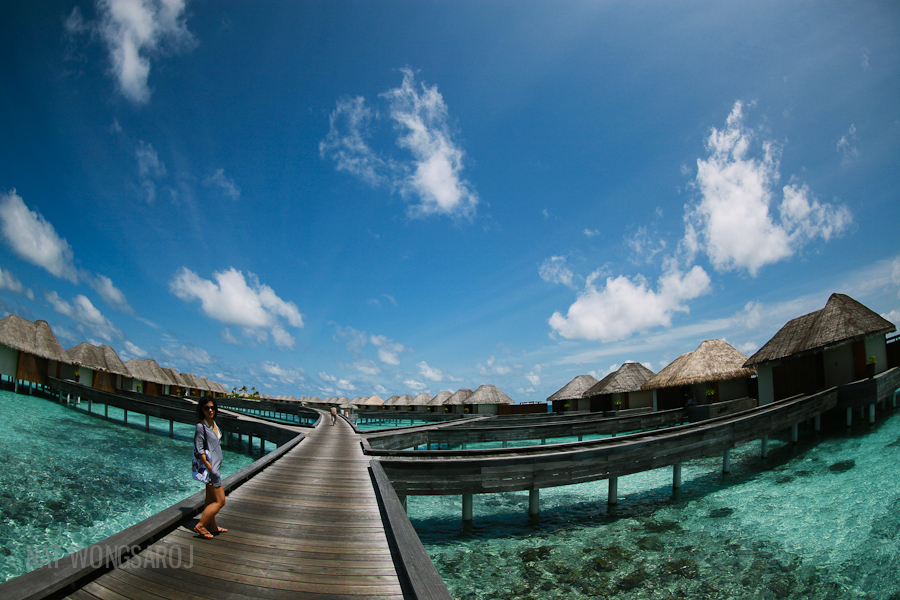maldives a paradise on earth essay The records include maps, images and charts along with 117 pictures, humpback whale sounds, greetings in 54 language, a 20-minute 'sound essay' of life on earth, and.